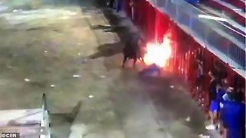 «Φλεγόμενος» ταύρος καρφώνει με τα κέρατα και σκοτώνει 71χρονο στην Ισπανία