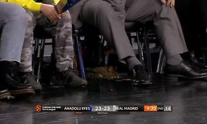 Μία… γάτα παρακολουθεί το Εφές-Ρεάλ! (video)