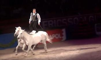 Ο γητευτής των αλόγων – Μια απίστευτη και επικίνδυνη χορογραφία (vid)