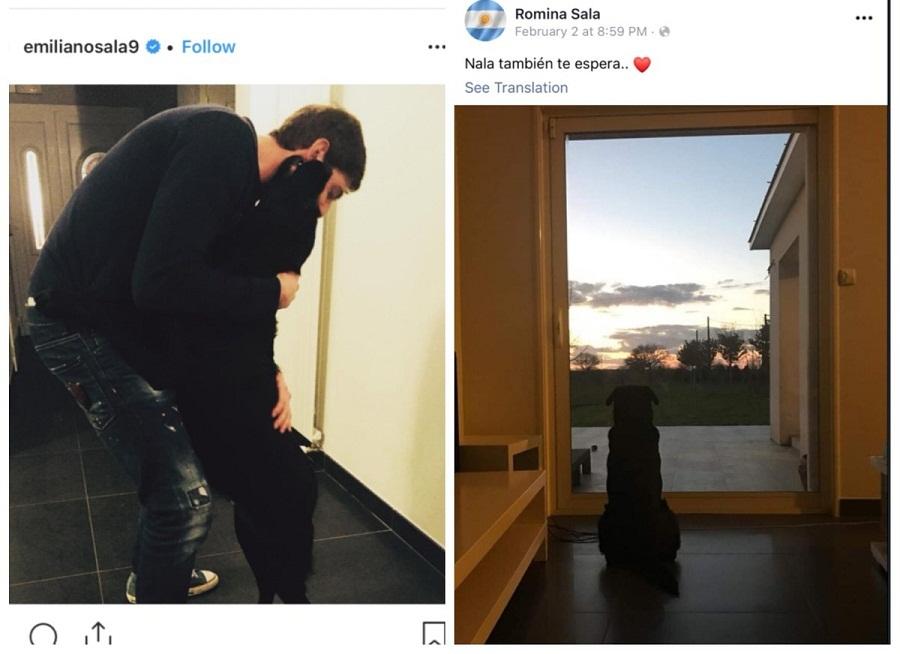 Η σκυλίτσα του Σάλα τον περιμένει μάταια να γυρίσει (pic)