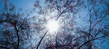 Καλός ο καιρός και σήμερα, μέχρι 18 βαθμούς η θερμοκρασία