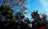 Συνεχίζονται και σήμερα οι Αλκυονίδες: Μέχρι 18 βαθμούς η θερμοκρασία