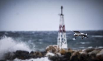 Κακοκαιρία «Ωκεανίς»: Ριπές ανέμου 140 χλμ./ώρα - Έπεσαν 2.000 κεραυνοί