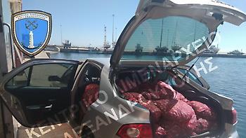Κατασχέθηκαν 1.253 κιλά όστρακα στην Αλεξανδρούπολη