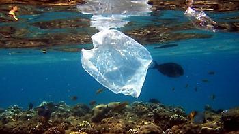 Απορρίμματα στις ελληνικές θάλασσες: Τι δείχνουν οι έρευνες