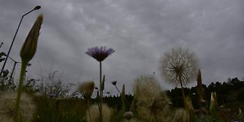 Καιρός: Συννεφιά, αφρικανική σκόνη και βροχές σήμερα