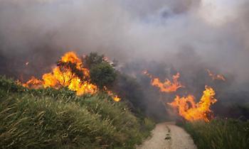 Yψηλός κίνδυνος πυρκαγιάς την Τρίτη: Η Πολιτική Προστασία προειδοποιεί-Ποιες περιοχές αφορά