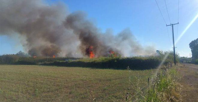 Καλαμάτα: Πυρκαγιά απέναντι από το αεροδρόμιο (video)