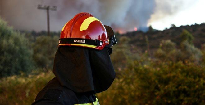 Πυρκαγιά στο Καλαμίτσι Λευκάδας