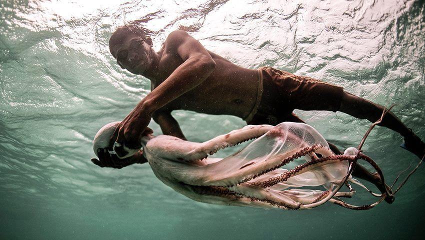 Ζουν στο νερό: Η απίθανη ιστορία των γενετικά μεταλλαγμένων «τσιγγάνων της θάλασσας»