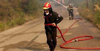 Πυρκαγιά σε αγροτική έκταση στη Θάσο