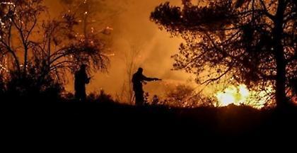 Υπό έλεγχο τέθηκε η φωτιά στην Ιστιαία Ευβοίας