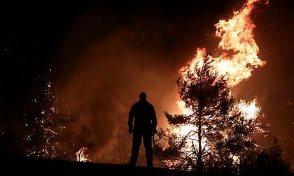 Η πύρινη λαίλαπα της Εύβοιας (pics/video)