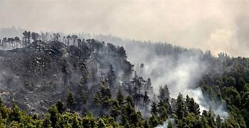 Φωτιά Εύβοια: Περιμένουν να «μιλήσουν» τα κινητά των υπόπτων