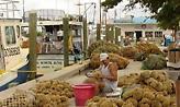 Το ελληνικό χωριό των ΗΠΑ που συνιστά τη μεγαλύτερη ελληνική κοινότητα στον κόσμο