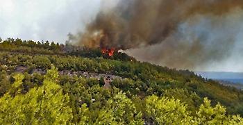 Πύρινα μέτωπα σε Κέρκυρα και Λακωνία- Επί τόπου η πυροσβεστική