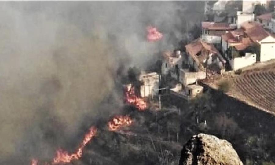 Γκραν Κανάρια: Περιβαλλοντική τραγωδία - Στάχτη έγιναν 60.000 στρέμματα