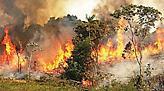 Αμαζόνιος φωτιά: Ο ουρανός στην Βραζιλία δεν σκοτεινιάζει από την πυρκαγιά