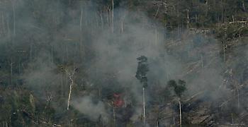Βραζιλία: Νέα μέτωπα φωτιάς - Η αγωνία για τον Αμαζόνιο αυξάνεται
