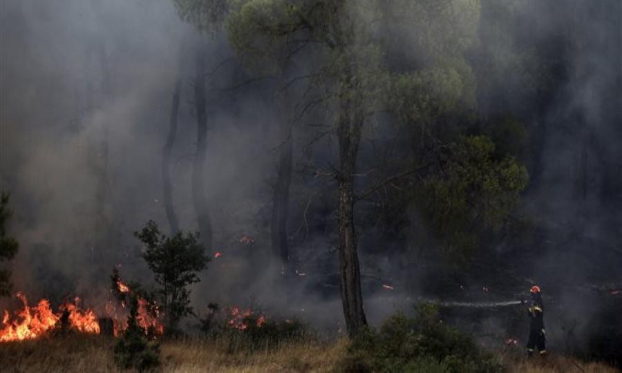 Πυρκαγιά στο Πεταλίδι Μεσσηνίας