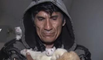 Ο Περουβιανός που έχει ως κατοικίδια χιλιάδες αρουραίους