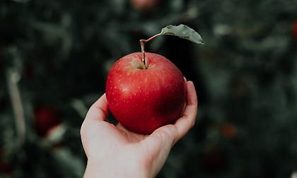Γιατί «ένα μήλο την ημέρα, τον γιατρό τον κάνει πέρα»;
