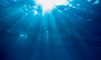 «Η ζώνη του Άδη»: Τι βρέθηκε στα άγρια νερά του βαθύτερου σημείου του πλανήτη