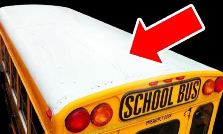 Γιατί τα σχολικά λεωφορεία έχουν πάντα άσπρη οροφή