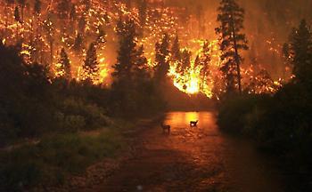 Η κλιματική αλλαγή αποτελεί την αιτία για πολλά δεινά στον πλανήτη