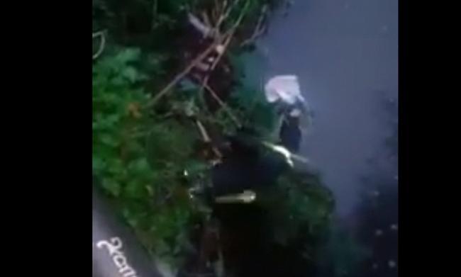 Κέρκυρα: Πέταξαν κουτάβια για να πνιγούν. Τα έσωσε η πυροσβεστική (vid)