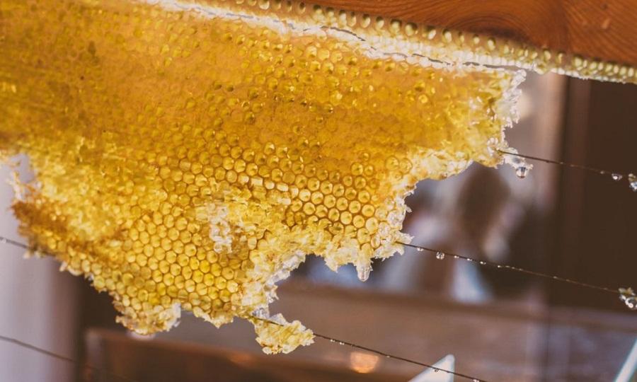 Γιατί το μέλι απογειώνει τις αθλητικές επιδόσεις;