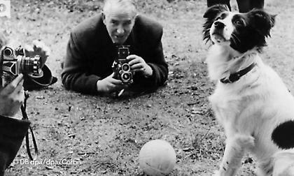 Ο σκύλος που έσωσε το Παγκόσμιο Κύπελλο!