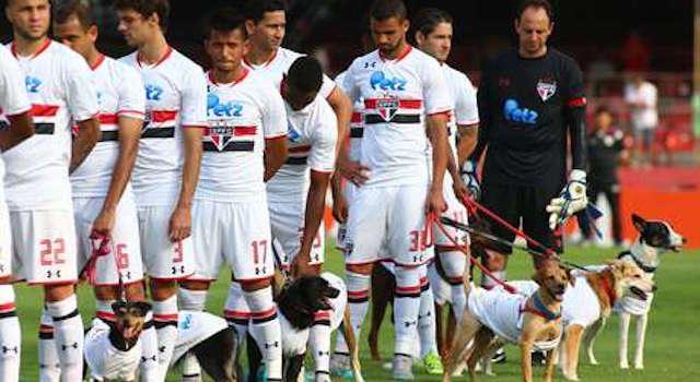 Είσοδος στο γήπεδο με σκυλάκια, αντί για παιδάκια (video)