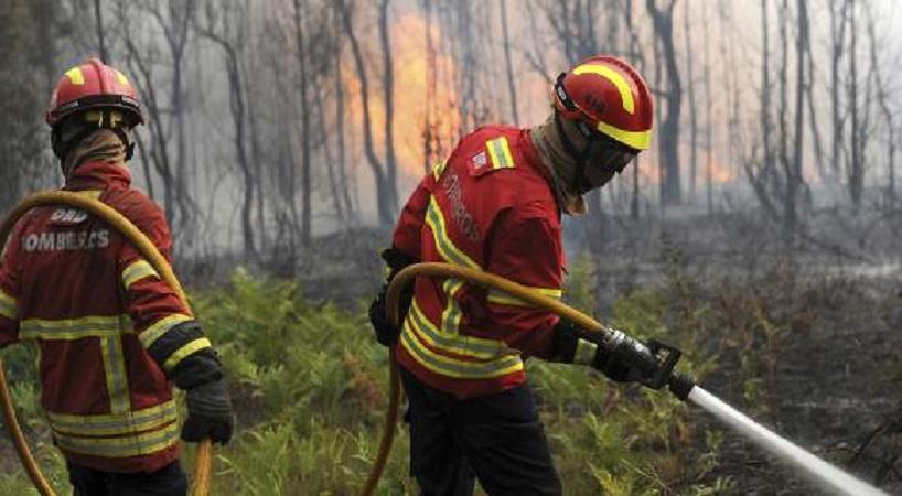Ο τραγικός απολογισμός της φωτιάς στην Πορτογαλία: 64 νεκροί και 157 τραυματίες