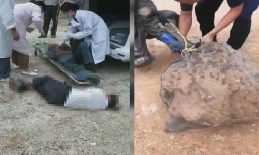 Κίνα: Σφήκες επιτέθηκαν και σκότωσαν τρία άτομα σε κηδεία