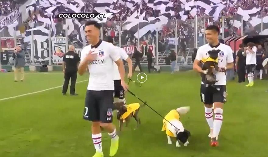 Οι παίκτες της Κόλο Κόλο μπήκαν στο γήπεδο με σκύλους στέλνοντας ένα όμορφο μήνυμα