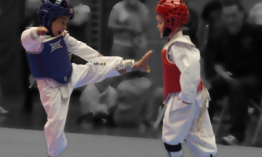 Δύο μετάλλια στο Παγκόσμιο Διαδικτυακό πρωτάθλημα τεχνικής Ταε-κβο-ντο