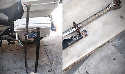 Θεσσαλονίκη: Σύλληψη 43χρονου με σπαθί σαμουράι