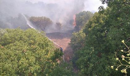 Σε εξέλιξη πυρκαγιά στη ΒΙΑΛ της Χίου