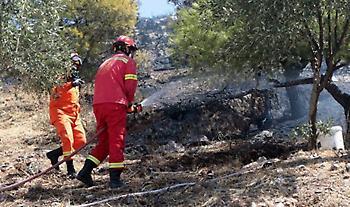 Φωτιά στην περιοχή Φοίνικας του Δήμου Σπάτων-Αρτέμιδας