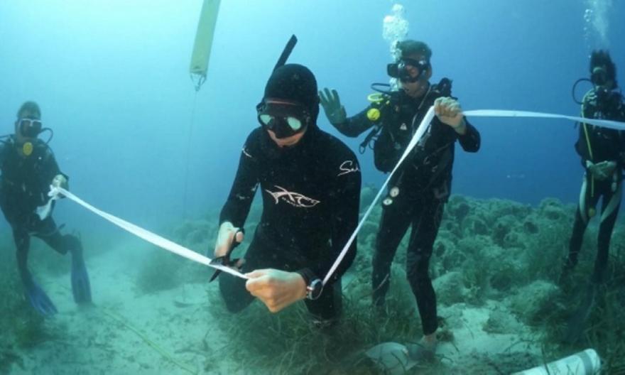 Εγκαινιάστηκε το πρώτο υποβρύχιο μουσείο της Ελλάδας - Την κορδέλα έκοψε ο Σάκης Ρουβάς
