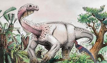 Τι ανακαλύφθηκε για πρώτη φορά σε δεινόσαυρο που έζησε πριν από 76 εκατ. χρόνια