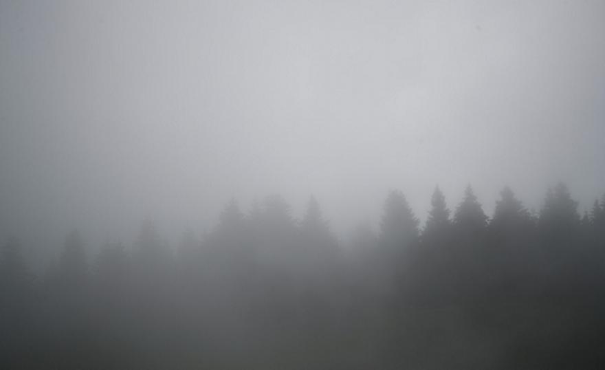 Προπονήθηκε στην ομίχλη ο Άρης (pics)