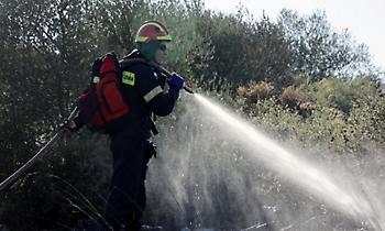 ΓΓΠΠ: Υψηλός κίνδυνος πυρκαγιάς την Κυριακή 16 Αυγούστου σε αυτές τις περιοχές