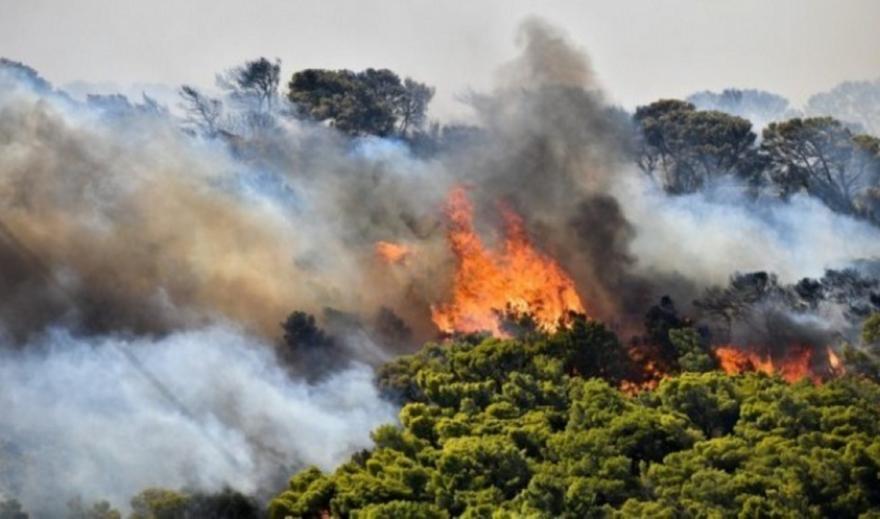 Αλεξανδρούπολη: Αναζωπυρώθηκε η πυρκαγιά μεταξύ Μελίας και Νίψας