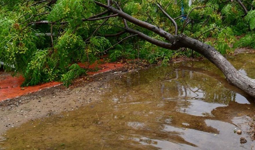 Κακοκαιρία έπληξε τη νότια Ηλεία - Τουρίστρια τραυματίστηκε από πτώση δέντρου