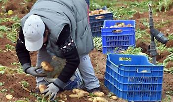 ΥπΑΑΤ: Πληρωμές 800 εκατ. ευρώ στους αγρότες έως τέλος του έτους