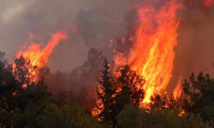 Χαλκιδική: Υπό μερικό έλεγχο η φωτιά στον Ταξιάρχη
