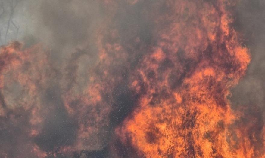 Πυρκαγιά σε δασική έκταση στον Δήμο Κάτω Νευροκοπίου Δράμας