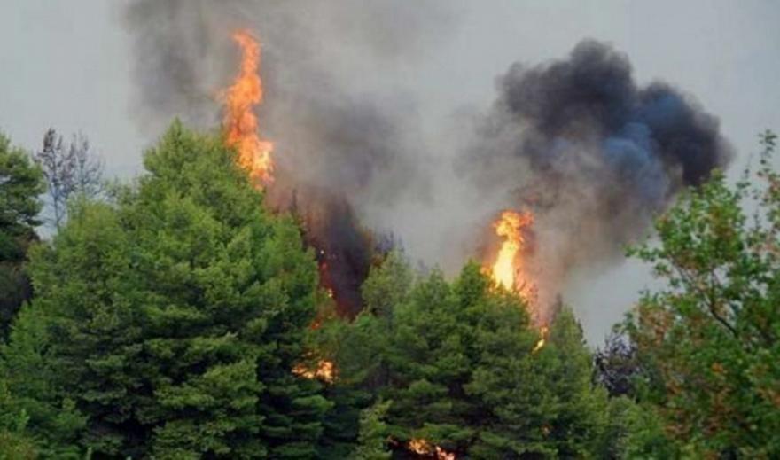 Πυρκαγιά στην Κάρπαθο: Μάχη σε δύο μέτωπα